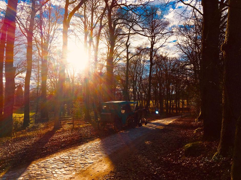 Ortseingang Heidedorf Wilsede // Foto ©Nicole Hacke