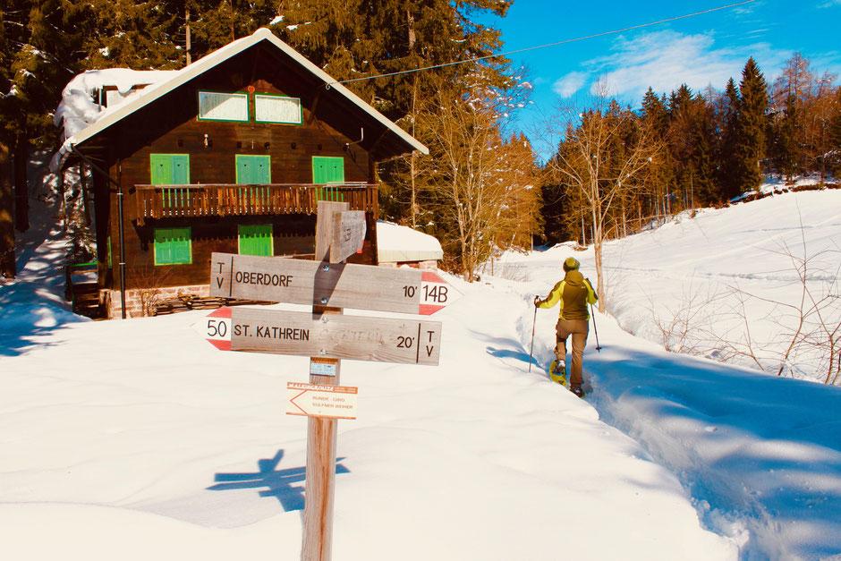 ©Nicole Hacke / Waldstück mit Lichtung auf Höhe Hafling Oberdorf