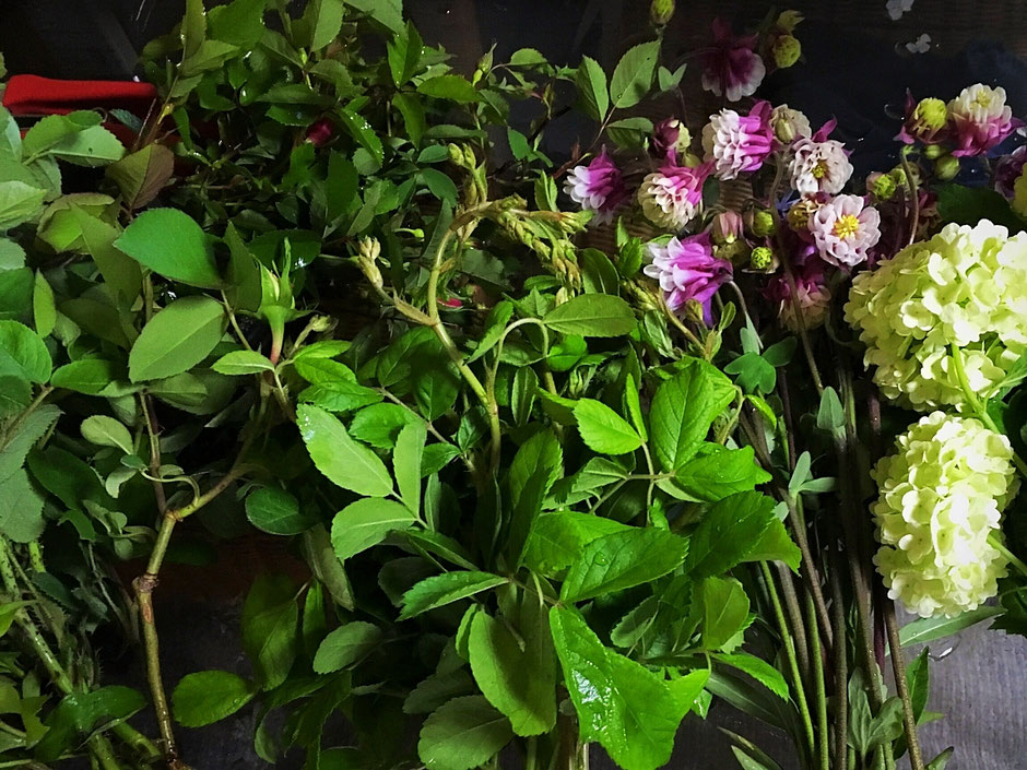 バラの枝は花がない時期も枝物としてお使いいただけます