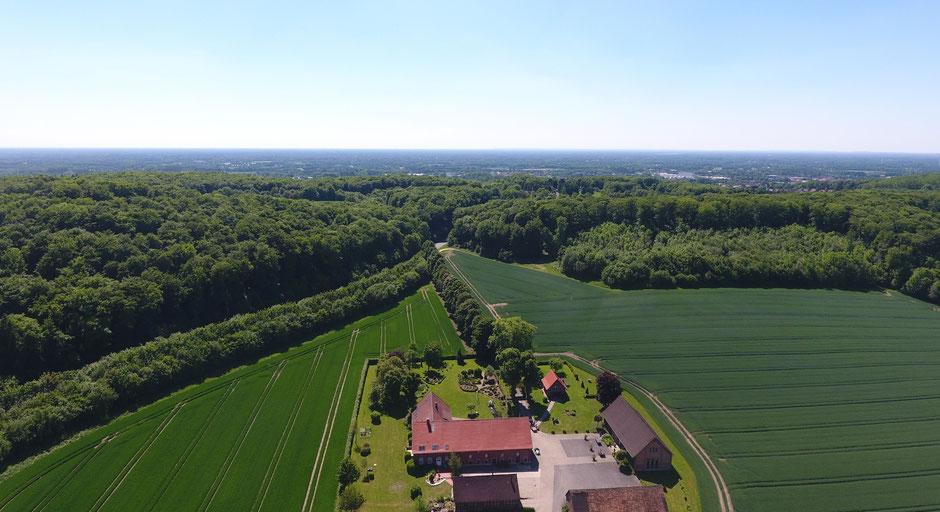 Der Tagungs- und Veranstaltungshof Schlamann liegt umgeben von Feldern und des Teutoburger Waldes in Lengerich (Westfalen), zwischen Münster und Osnabrück. Ihr erreicht uns sehr gut über die Nähe zur A1, A30, zum Bahnhof Lengerich und über den FMO.