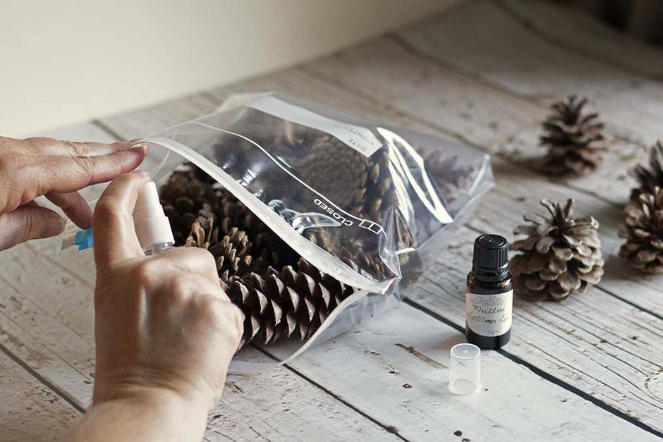 Scented pine cones DIY, image via ruralsprout