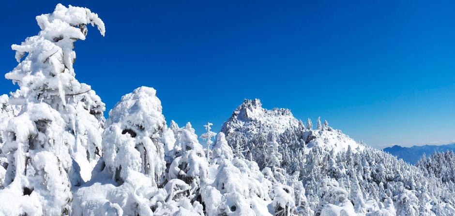 登山道より三ッ岳