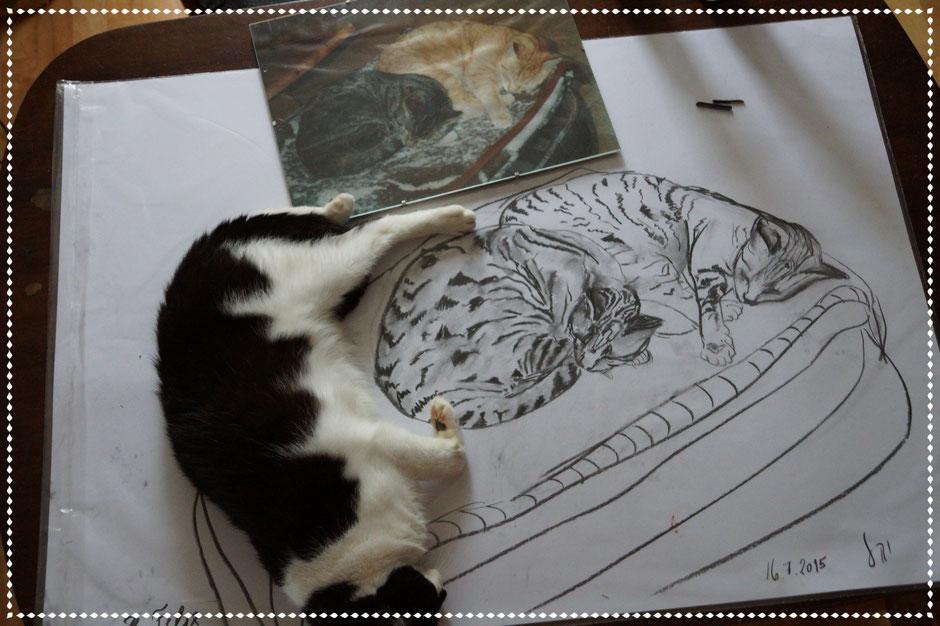 Utes verstorbene Katzen zum Gedenken, Kohle auf Papier, 70x100cm, 2015