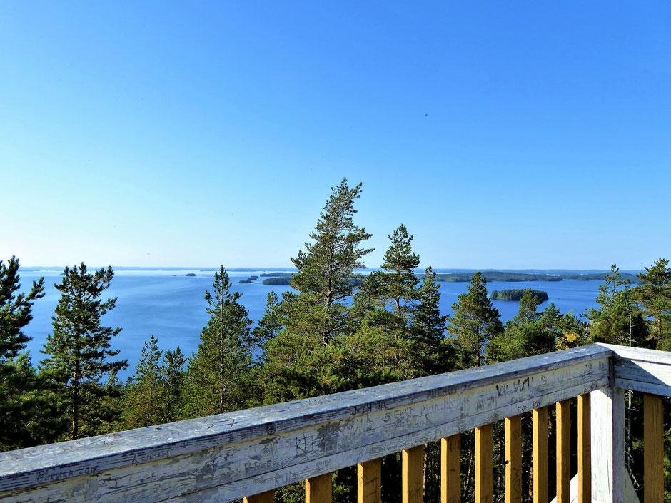 Panorama Seeblick Päijänne See Nationalpark Finnland