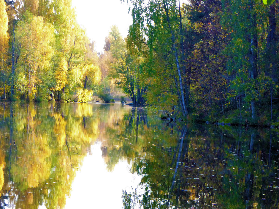 Wandern See und Wald Herbst Finnland