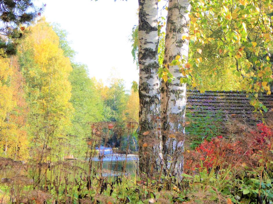 Herbst Finnland Wanderung am Fluss