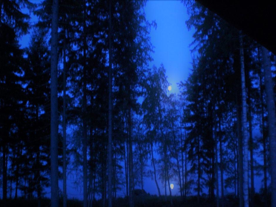 Vollmond Wald und See Finnland