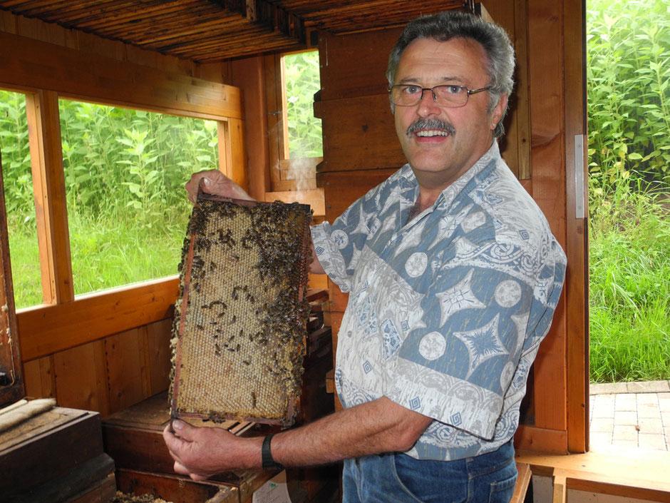 Honig reif zum Schleudern