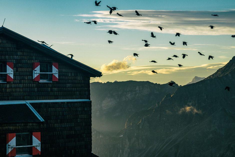 Innsbrucker Hütte im Morgengrauen