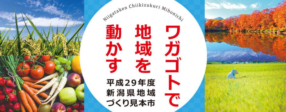 平成29年度新潟県地域づくり見本市 ~ワガゴトで地域を動かす~