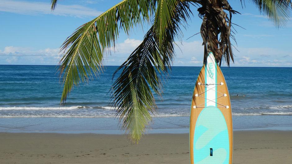 Hawaii SUP Festival am Kemnader See
