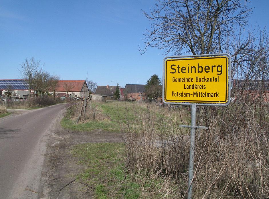 Foto: Steffen Huber / Bürgerinitiative Asphalthennen Ziesar