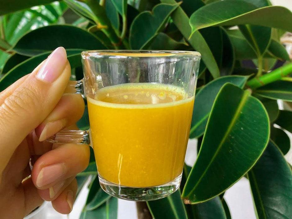 Ingwer-Zitronen-Shot | erfrischend & voller Vitamine