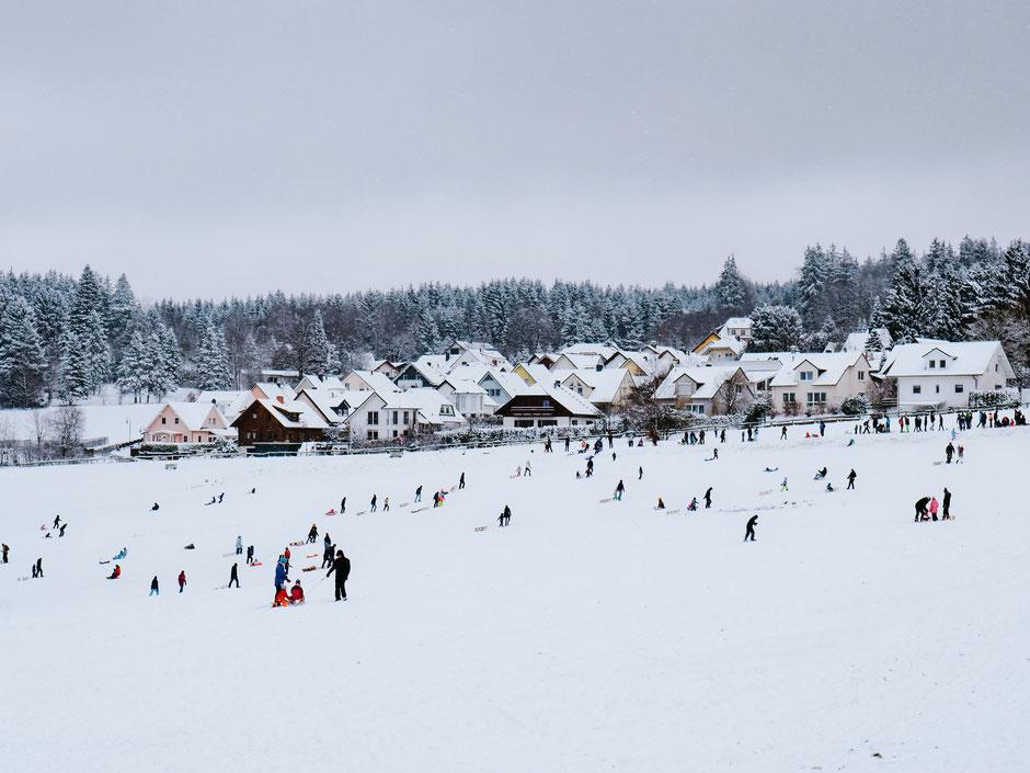 Taunus, Frankfurt, Taunus Nature Park, Winter, Snow, Tobogganing