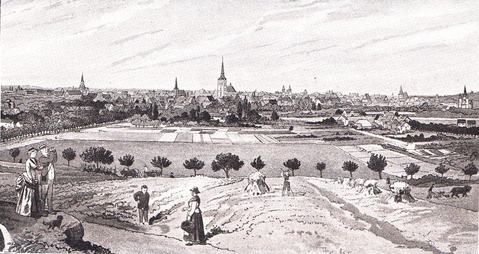 Blick vom Galgenberg um 1900