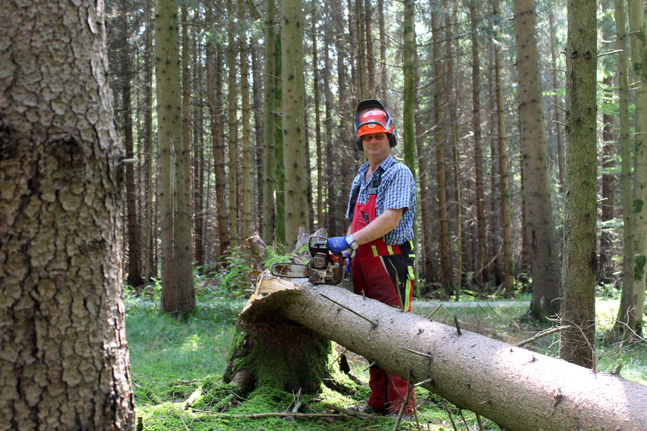 Prächtig Bayerisches Brennholz vom Waldbauern - Pointnerhof | Der Kompost &UZ_82