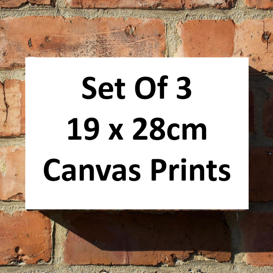set of 3 small canvas wall art print personalised customised gift