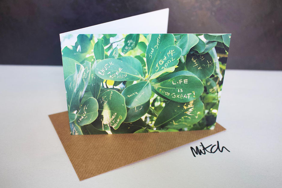 card life is great graffiti plant garden lover gardener blank inside greeting card any occasion birthday best wishes