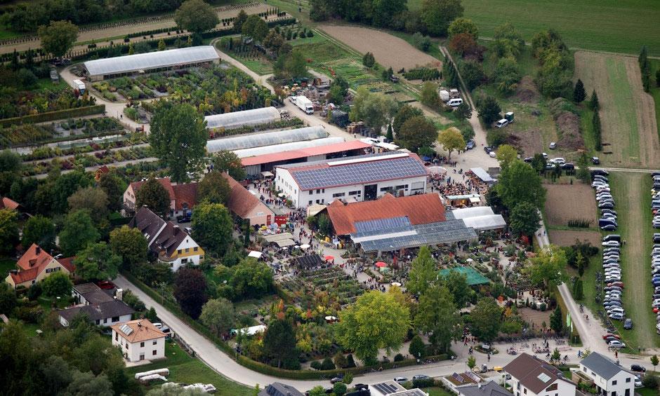 Baumschule Schwab – seit 75Jahren ein Begriff.
