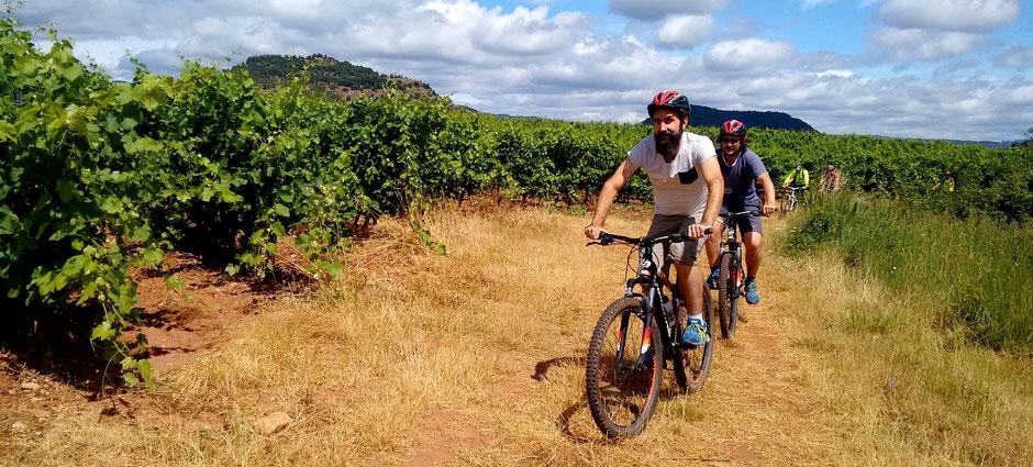 Visite Balade Circuit dans les vignes dégustation de vin en vélo Hérault en Vélo électrique Languedoc Vignobles et Découvertes