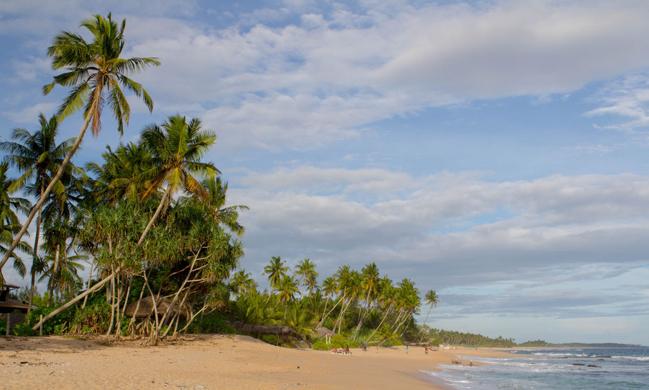 Beautiful beach in tangalle - sri lanka - travelbees blog