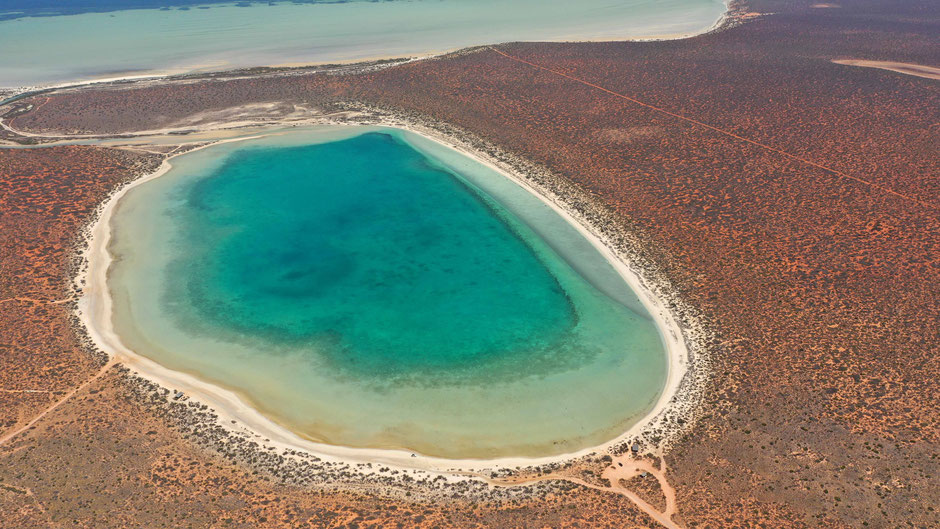 Small Lagoon near Denham - Shark Bay - Australia - Drone Photography - travelbees.de