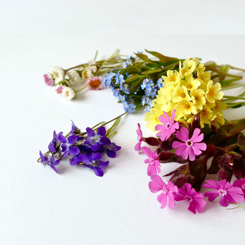 Blumen in verschiedenen Farben trocknen