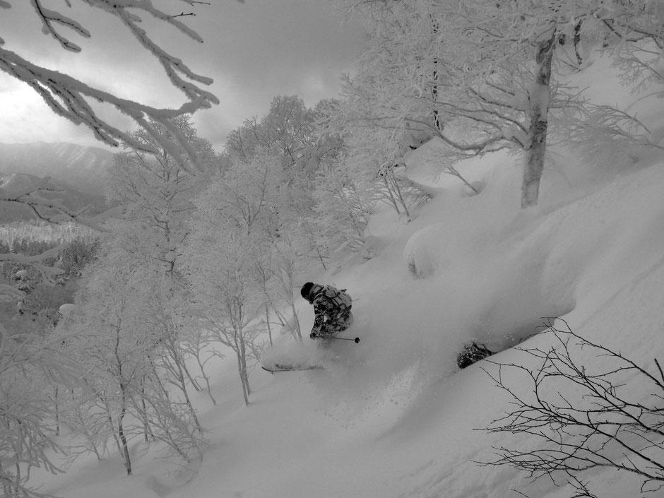 japan-ski-hokkaido-backcountry