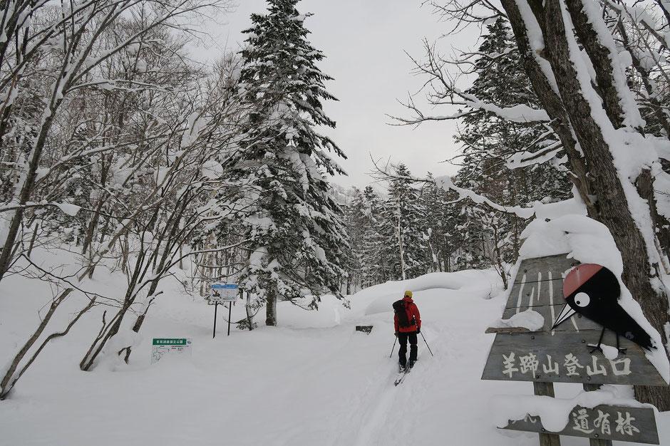 backcountri-ski-guide-Hokkaido-Mt-Yotei