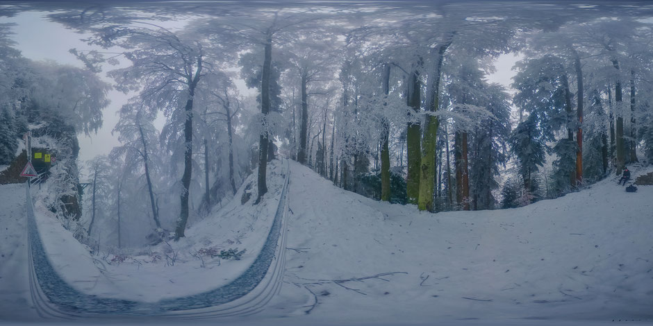 """click for 360° view """"frozen forest"""" Bürgenstock, NW"""