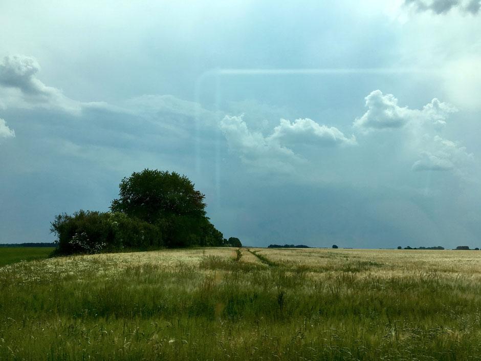 dieartigeBLOG - Sommer-Cruisen durch Vorpommern, Getreidefelder und Gewitterwolken
