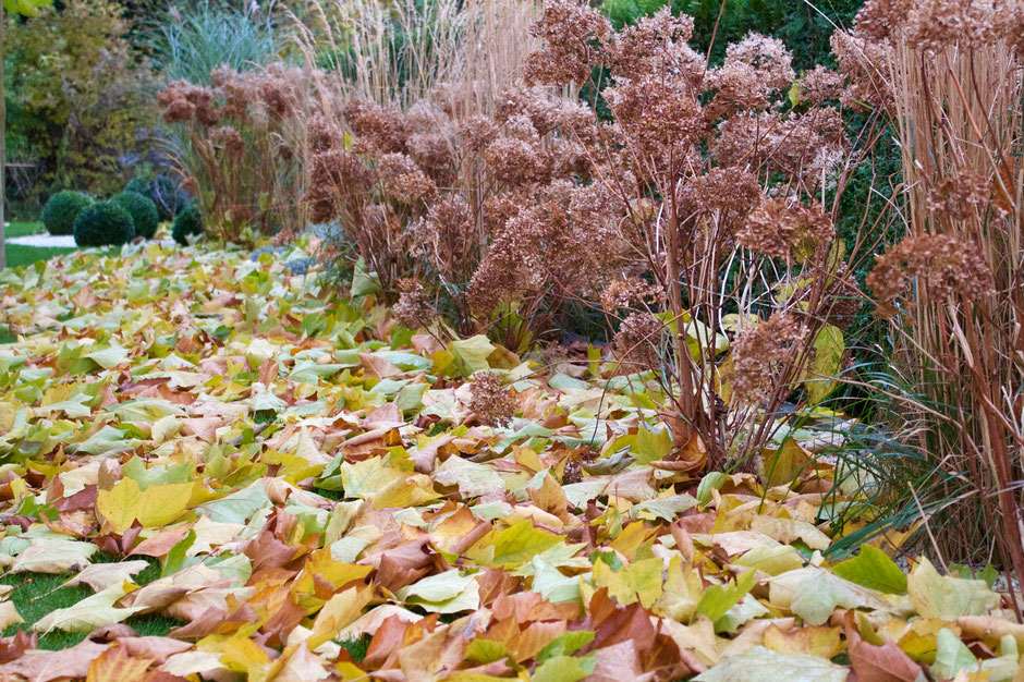 dieartigeBLOG - Herbstlaub ist hygge