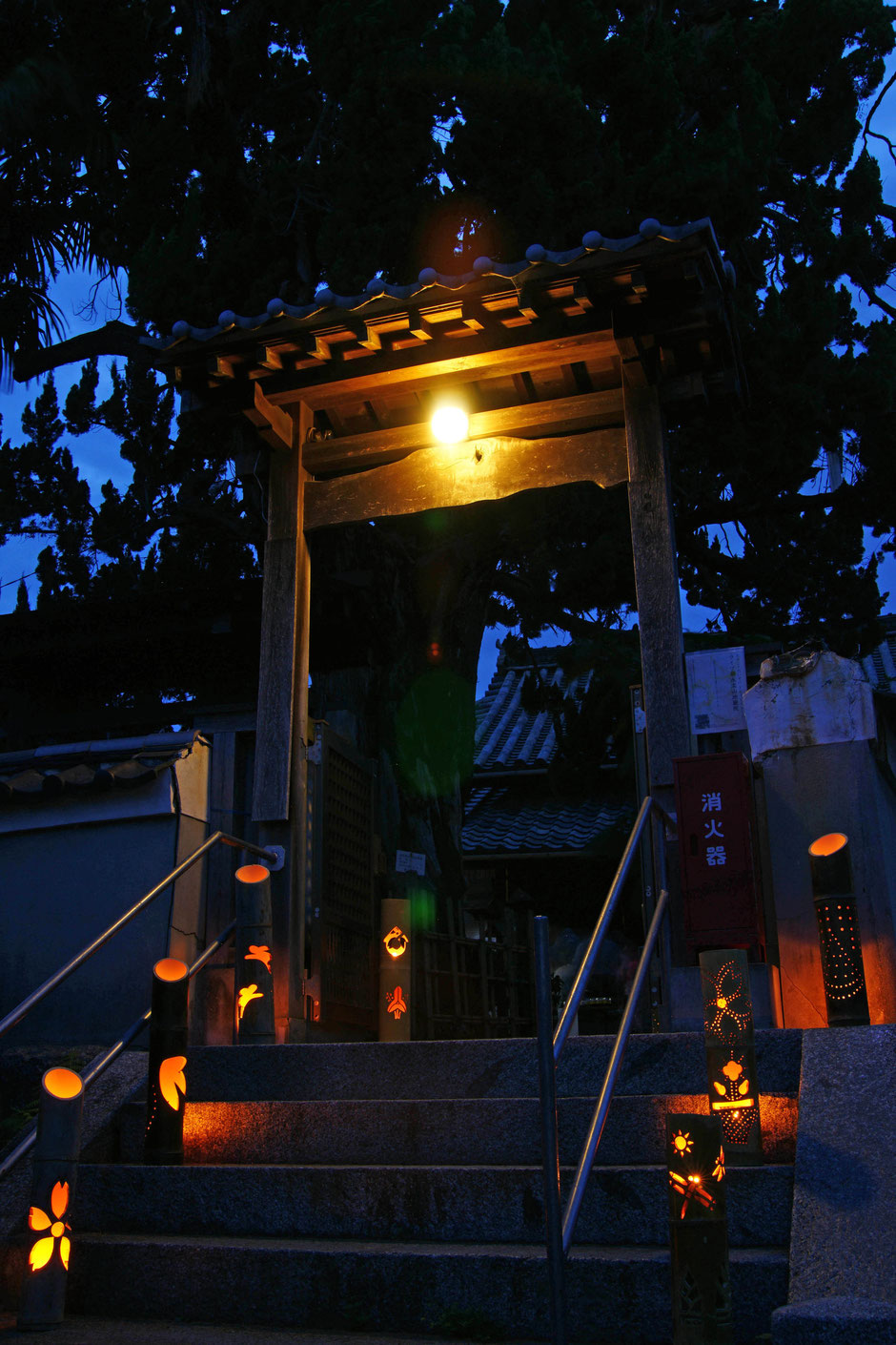竹灯篭展示の様子