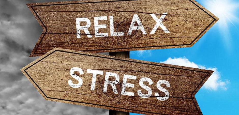 Programme de la formation Gérer son stress au quotidien Dolorès FRETARD