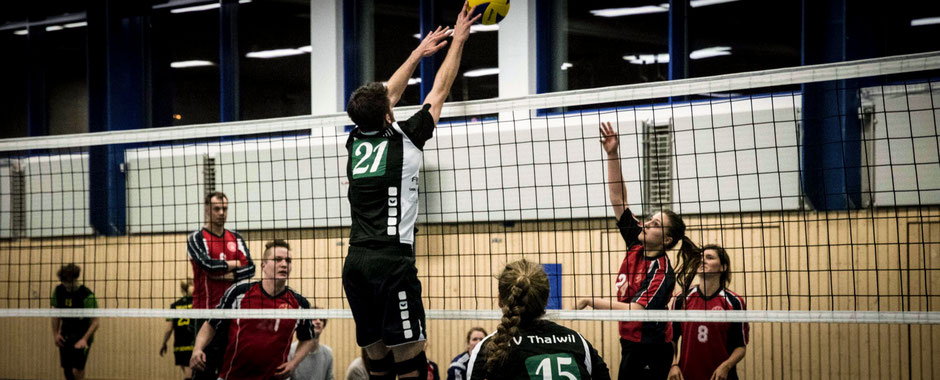 TV Thalwil Volley Open