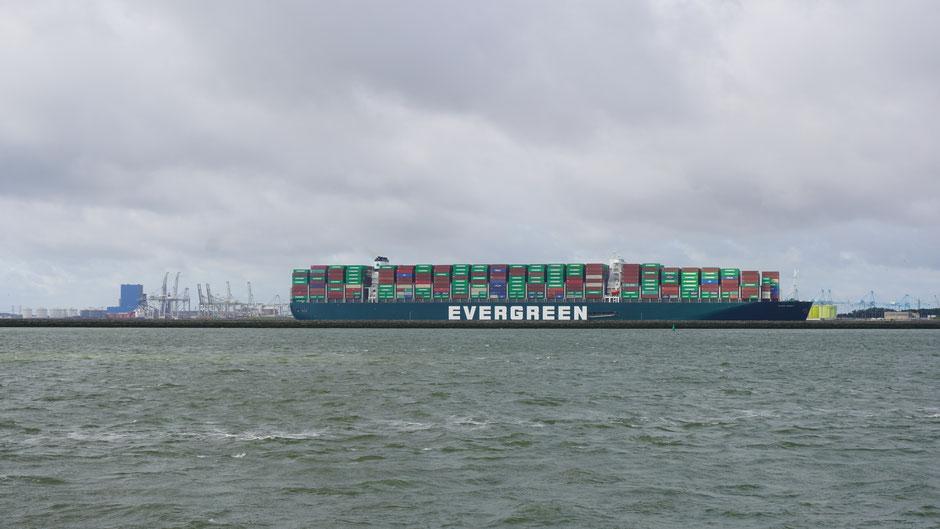 Die große Schwester Evergiven steckt im Suezkanal, und die kleine Schwester hier im Rhein ...