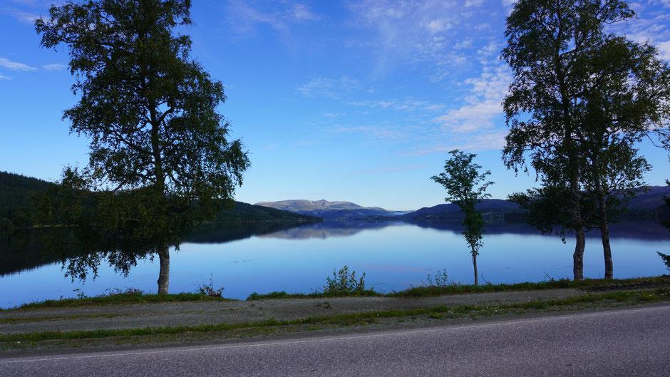 Morgenstimmung am Fjord