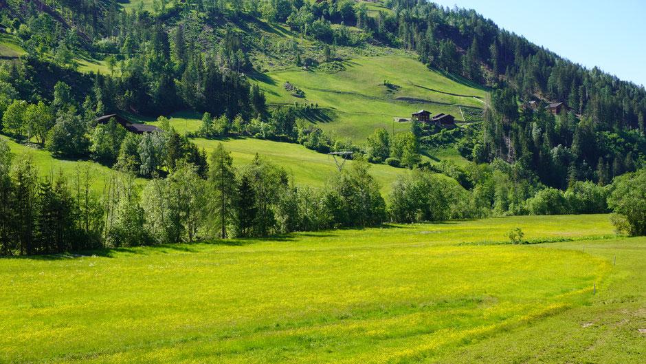 Kärntner Grün und Mölltaler Bauernhöfe