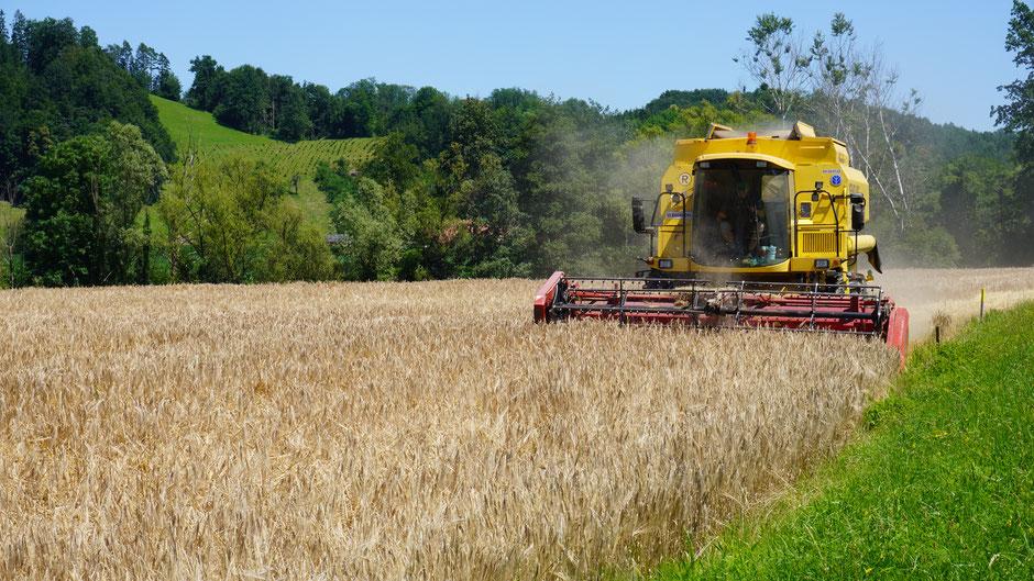 Gegenverkehr und Brot für das Land