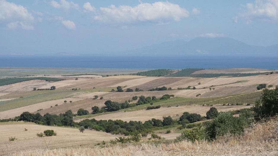 Getreide- und Sonnenblumenfelder mit Blick auf das Marmarameer