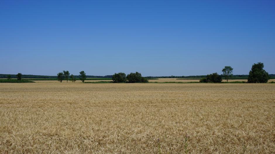 Reichlich flach die Gegend Richtung Ungarn