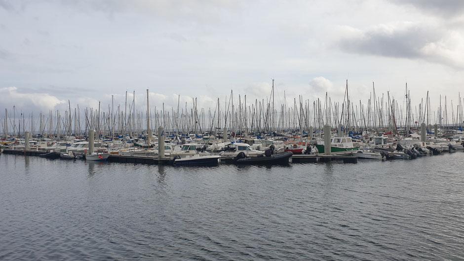 Yachthafen Brest - Mast an Mast und gut für Rekorde wenn es ums Segeln geht