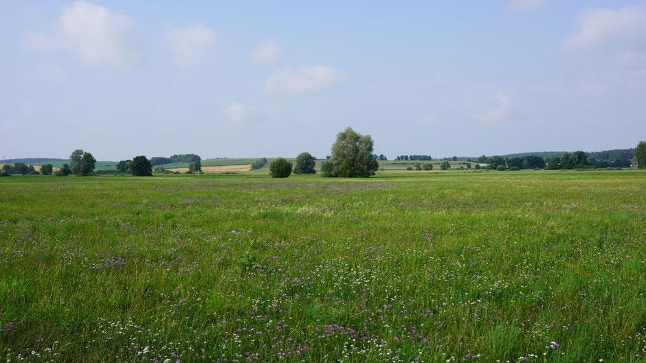 Wunderbare Landschaft vor Regensburg