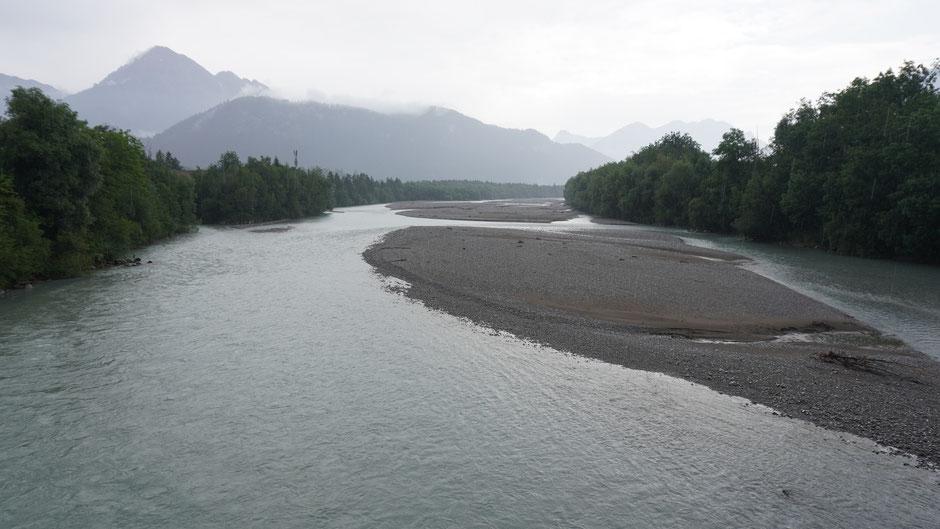Der Lech als stolzer Fluss vor Reutte ...