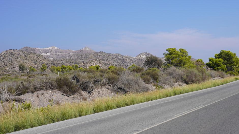 Landschaft im Leopardenlook ...