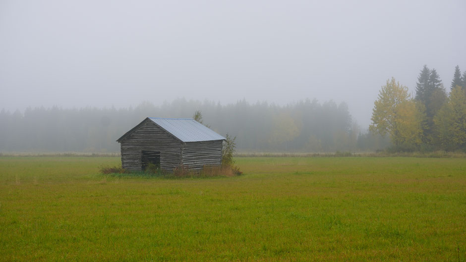 Nebelgraue Hütte