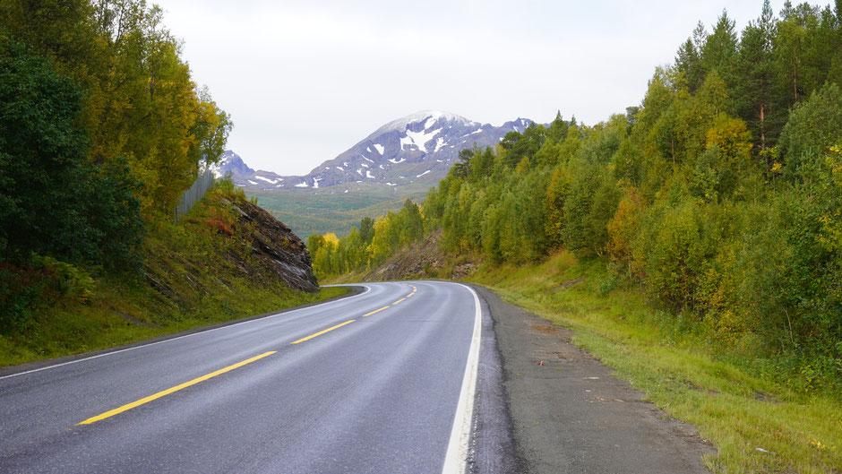 Mit Schwung um die Kurve und den Bergen entlang ...