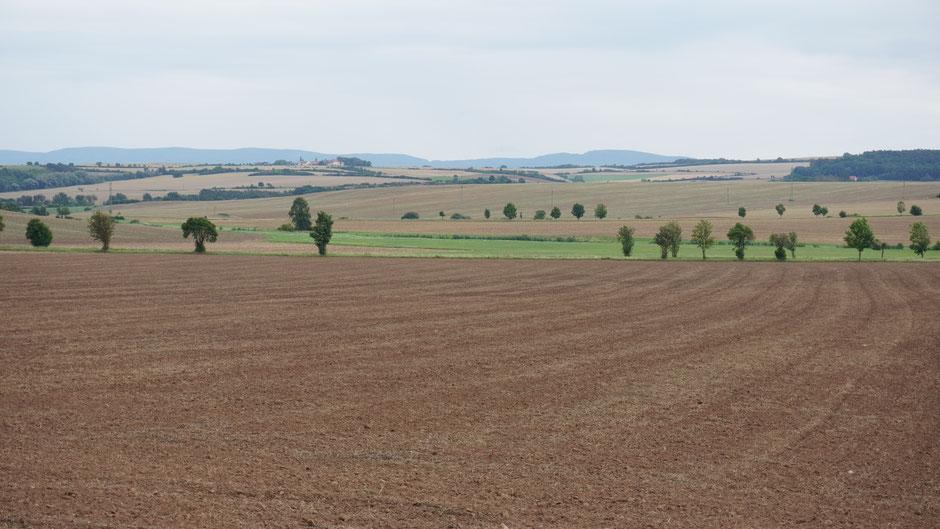 Rote Erde, weites Land, eher flach ... bevor es dann nach Prag geht ...