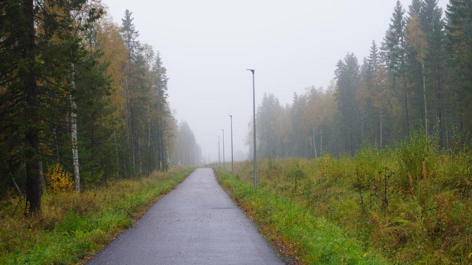 Ein nasser Radweg, und Nebel mit dazu ...