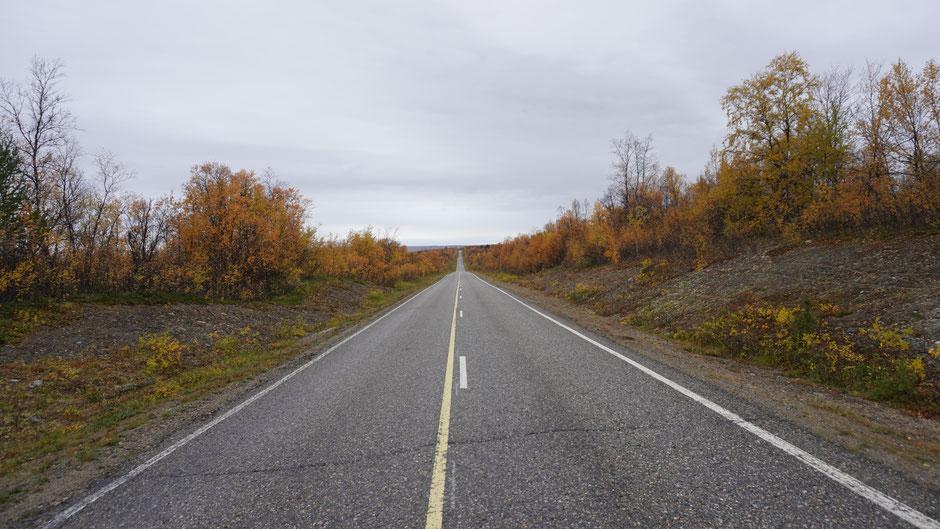 Geradeaus mitten durch Lapplands Herz